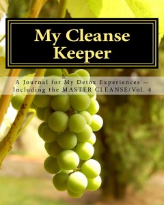 My_Cleanse_Keeper_Cover_for_Kindle_VOL 4